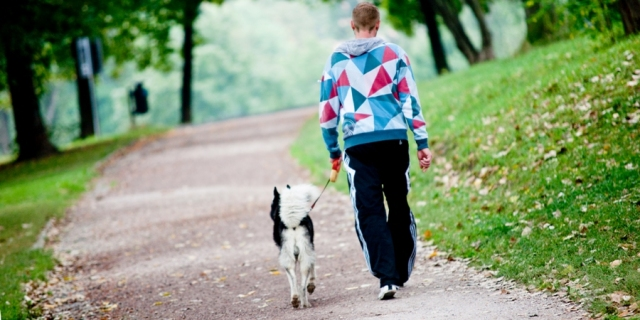 cani senza vista training passeggiate