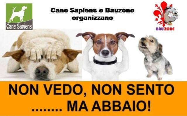 cani senza vista corso
